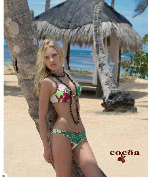 COCOA 2010-38